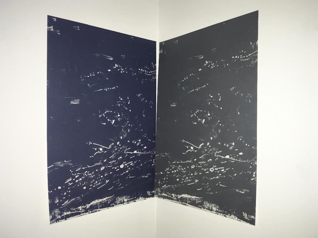 In Folds, 2018 (Díptico; fotopolímero, 64×88 cm)